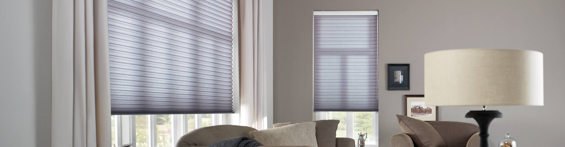 Electric Pleated Blinds Header Image